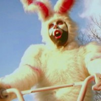 """Animal Collective """"Who Can Win a Rabbit?"""""""